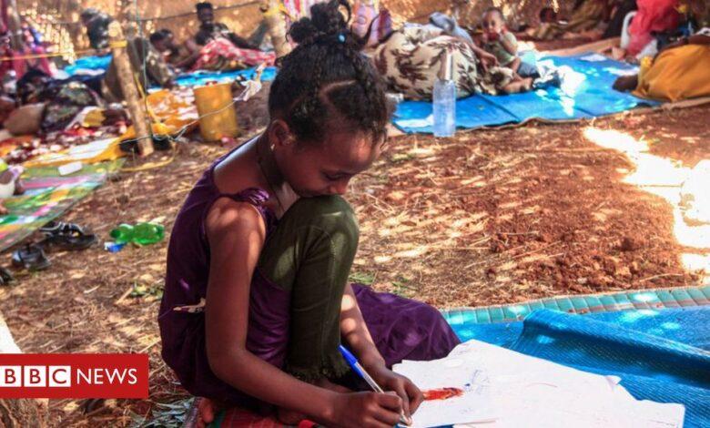 Ethiopia Tigray crisis: Abiy issues 'ultimatum' as civilians flee fighting