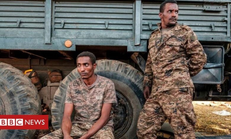 Ethiopia's Tigray crisis: Army claims advance on several towns