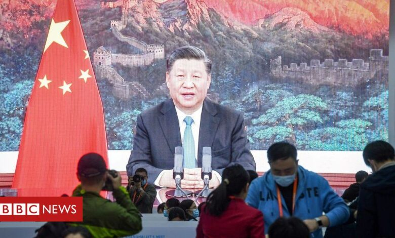President Xi at Apec: China pledges to open up its 'super-sized' economy