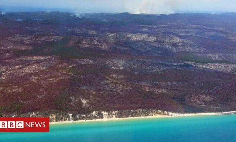 Australia bushfire: Fraser Island residents told to leave immediately