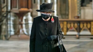 Photo of Queen Elizabeth had a rough 2020. But the pandemic gave her renewed relevance.