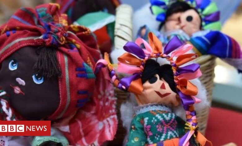 Reptiles smuggled from Mexico found at German airport stitched inside dolls