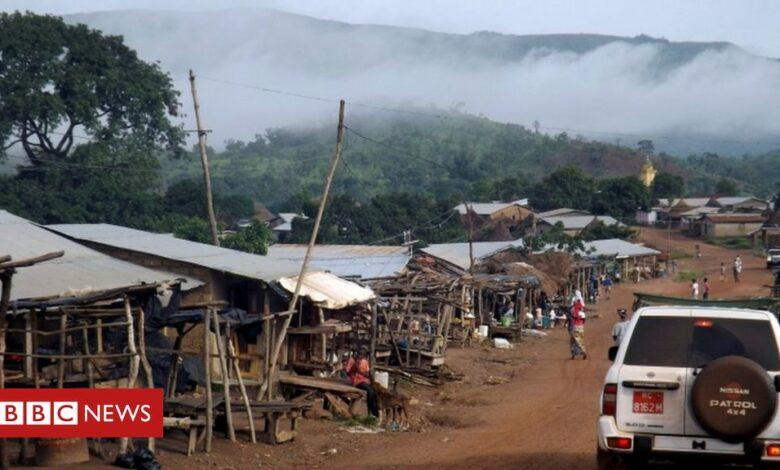 Steinmetz Swiss trial: Jail for tycoon in Guinea mine corruption trial
