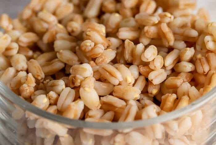 Farro in a bowl for What is Farro