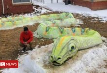 Photo of Denver family wows neighbourhood with snow art